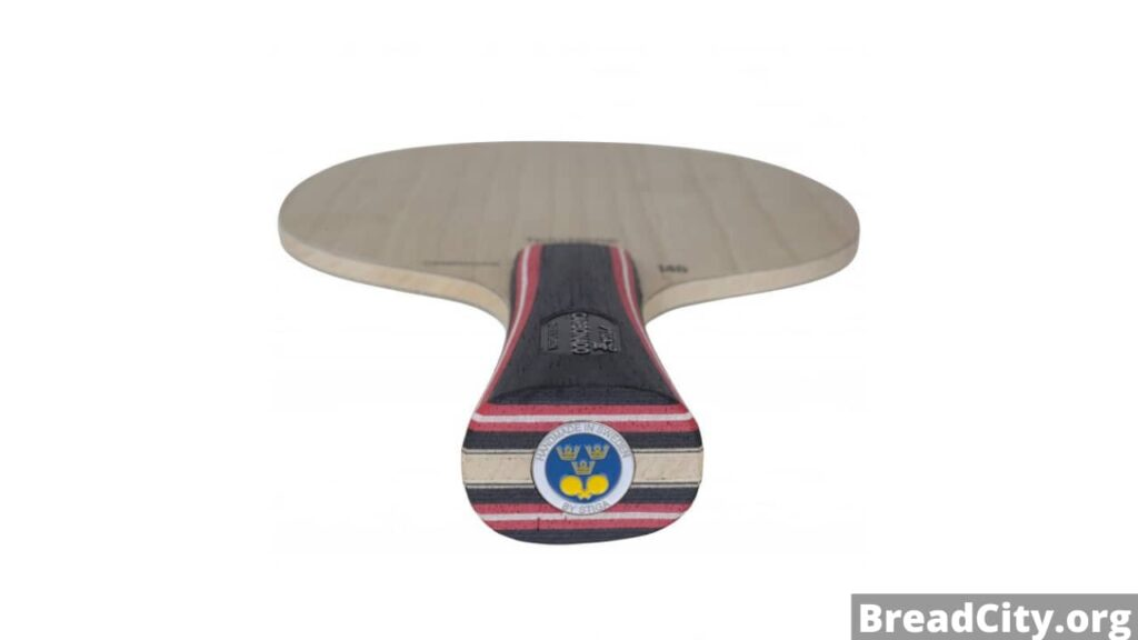Is Stiga Carbonado 145 Table Tennis Blade worth buying? My honest review on this table tennis paddle on BreadCity