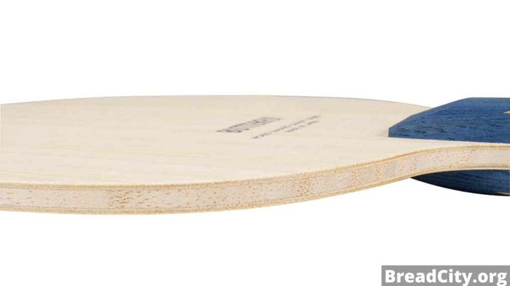Should I buy Butterfly Timo Boll ZLF table tennis paddle? Is this Table tennis blade worth buying? My review