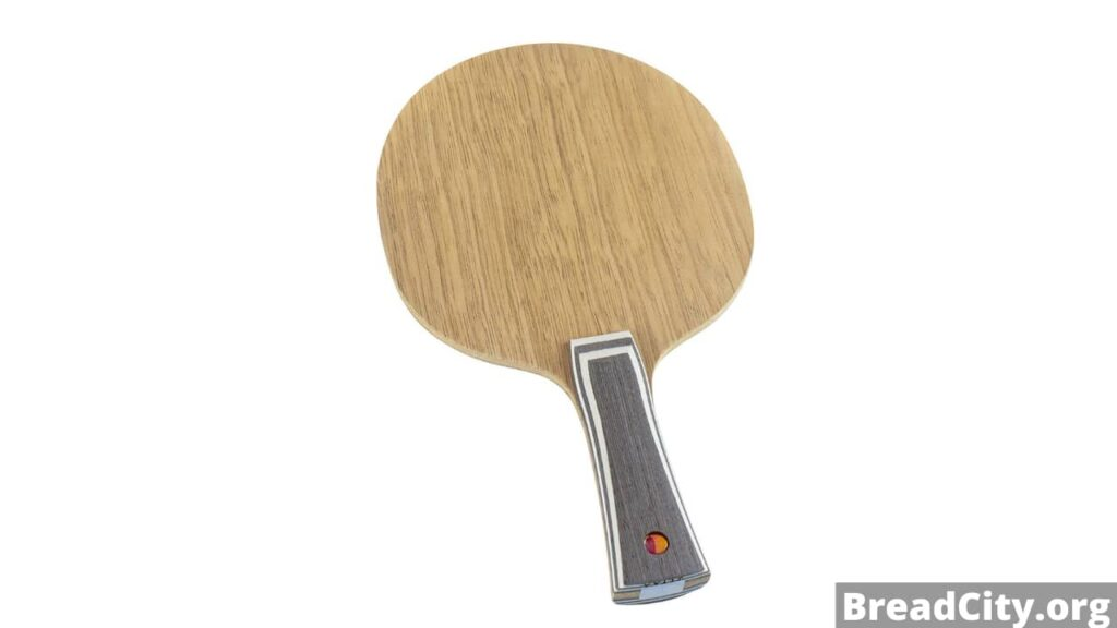Should you buy Butterfly Petr Korbel Table Tennis Blade? My honest review on this table tennis blade