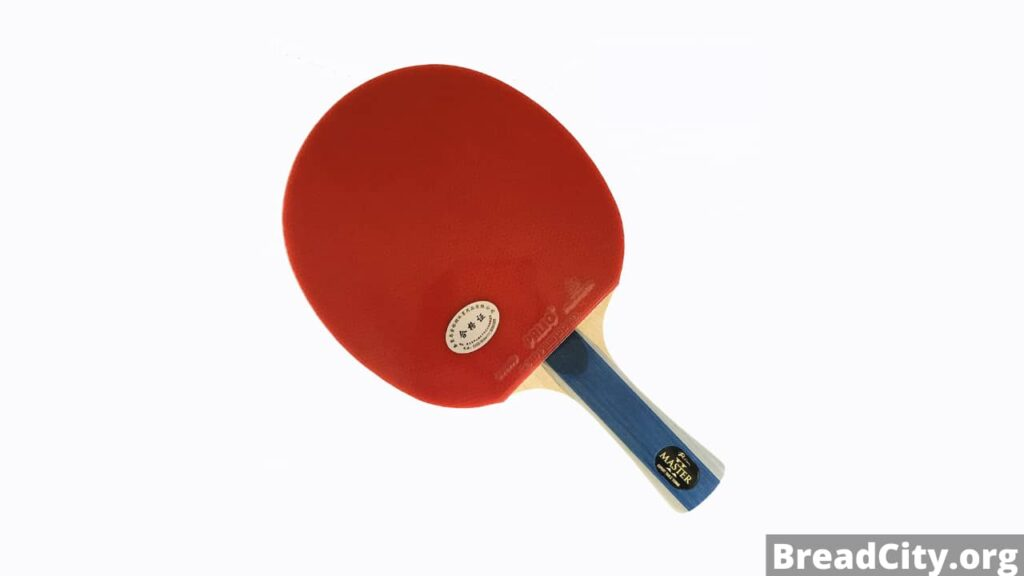 Is Palio Master 2 Table Tennis Racket worth buying? My review on this table tennis blade