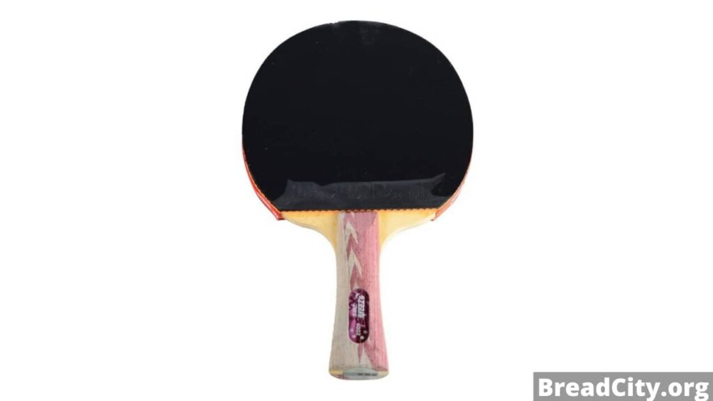 Should you buy DHS A4002 Table Tennis Racket? My review on this ping pong paddle
